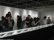 Ukiyo-e Musée Cinquantenaire Bruxelles