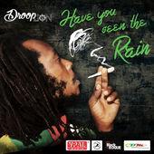 Droop Lion-Have You Seen The Rain-Free People Entertainment / Black Rogue International / Caribbean Development & Management / VPAL Music-2017.