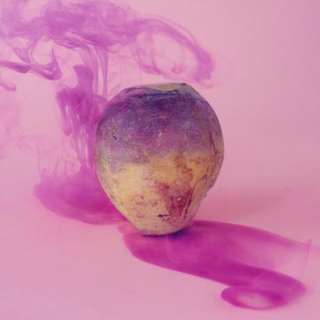 The Secret Lives of Fruits and Vegetables par Maciek Jasik