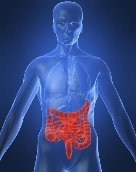Maladie de CROHN : Bientôt un test de diagnostic sanguin ? – JCC