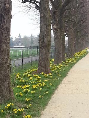 Au vent et aux couleurs, un peu de ma marche du matin