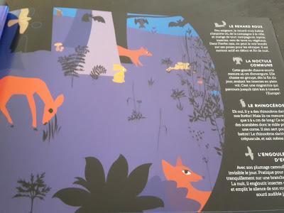 Feuilletage d'albums #45 : Documentaires Mon petit livre d'art pour raconter l'Histoire - Les incroyables savoirs - Petits animaux de la nuit - Dessus Dessous Autour du monde