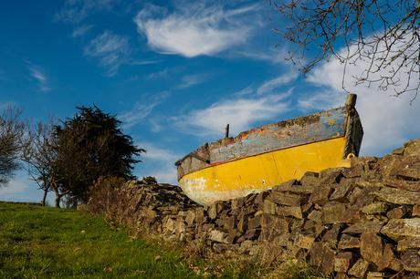 chercher du #jaune : à Plonéour-Lanvern (6 photos)