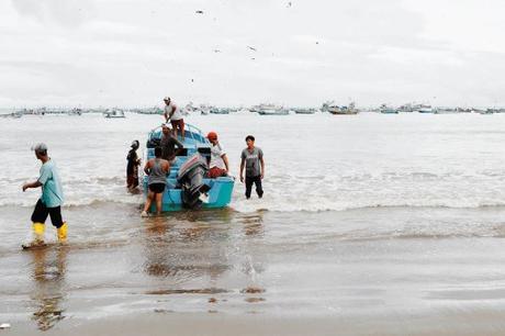 Guayaquil, Puerto Lopez et Santa Cruz