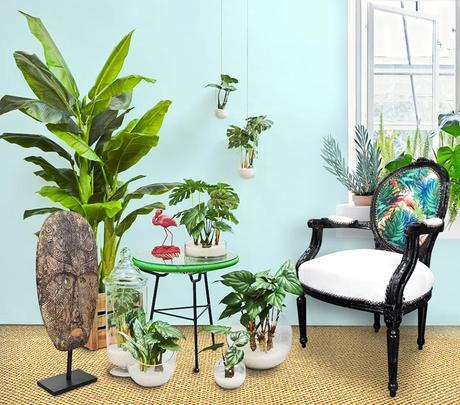 fauteuil de style Louis XVI dans une décoration Urban Jungle à l'esprit bohème