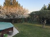 Point cerisier Mars