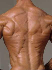 mal de dos et musculation