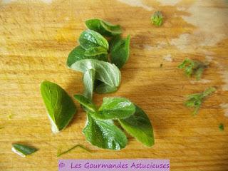 Tortilla verte (Oseille, Chénopode Bon-Henry, Egopode et Origan sauvage)