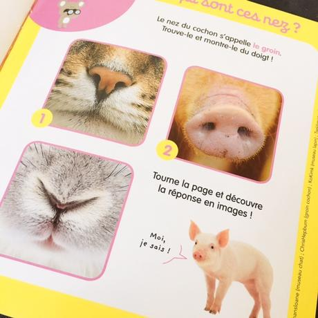 Kolala : le magazine imagier pour les bébés !