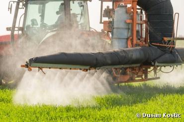 Santé : tous contaminés au glyphosate, herbicide le plus vendu au monde