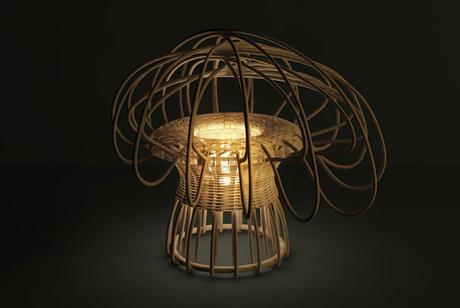 Elliptic lamp