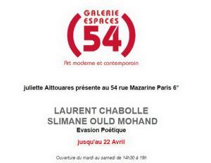 Galerie 54   exposition Laurent Chabolle et Slimane Ould Mohand  « Evasion Poétique »  jusqu'au 22 Avril 2017