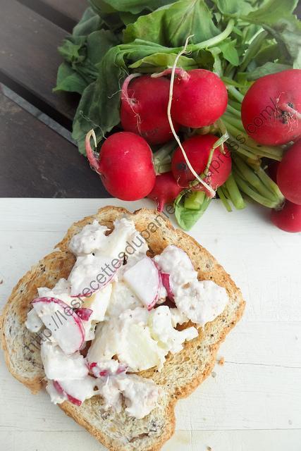 Tartinade au thon et aux radis / Tuna and Radish Spread