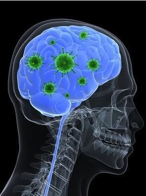 SYNDROME du CÔLON IRRITABLE : Le cerveau en cause dans le déséquilibre du microbiote – Microbiome