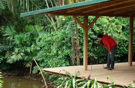 Visiter l'Amazonie en Équateur