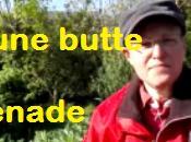 Culture foin promenade jardin (vidéo)
