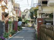 Voyage Tokyo Yanaka, quartier chats