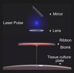 Schéma de la Bio-Impression par Laser