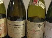 Dégustation l'aveugle experts Wine Teeps