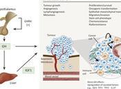 #trendsinendocrinoloogyandmetabolism #IGF1 #oncologie Hormone Croissance Humaine d'origine tumorale comme cible thérapeutique Oncologie