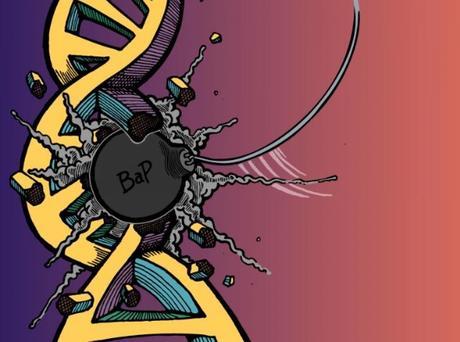 TABAGISME : Lorsque l'ADN est touché, aujourd'hui ça se voit  – PNAS