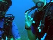 Formation Plongée sous-marine Guide Certification Scaphandre