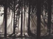 Robert Longo ombre lumière