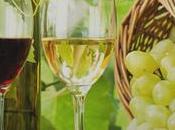 vins spiritueux J'adopte