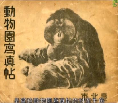Ichiro, l'effigie du Zoo de Taipei à l'époque japonaise