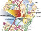 #trendsincellbiology #tumeur #cancer #microenvironnement #métabolisme Interactions métaboliques microenvironnement tumoral