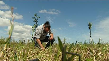 Dans sa ferme de Charente-Maritime, Benoît Biteau a décidé de se tourner vers une agriculture moins consommatrice d'eau. / © FTV