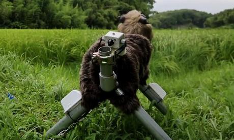 Un Robot Loup-Garou – Japon