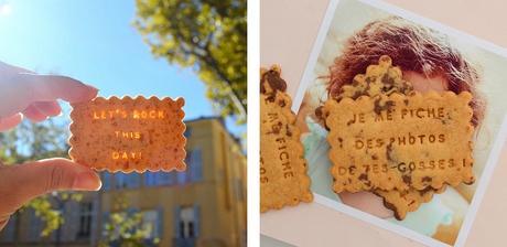 Les Gâteaux Expressifs de Shanty Biscuits