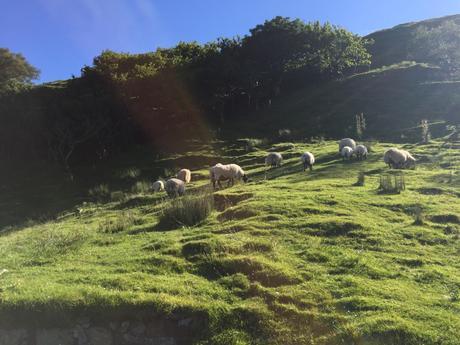 Ecosse : en route vers l'île de Skye