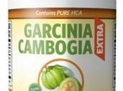 Garcinia Cambogia Extra: formule unique contient cétone framboise