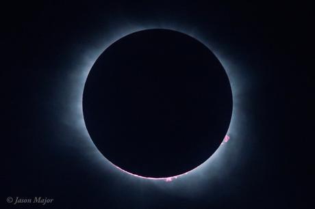 Le Soleil et la Lune au moment de la totalité en Caroline du Sud. Du disque noir ne dépasse que les protubérances solaires. Les deux astres alignés sont nimbés de la couronne solaire -- Crédit : Jason Major, lightsinthedark.com
