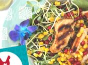 Septembre: Menu poulet semaine mois national #CDNChickenMonth