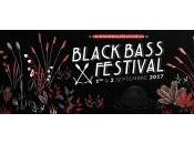 Black Bass Festival 2017 Soir