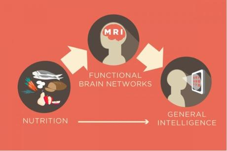 NUTRITION : Elle peut mettre de l'ordre dans les idées