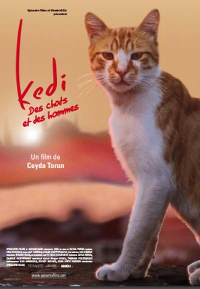 Présentation du documentaire « KEDI – des chats et des hommes »