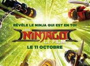 #Cinema :TEDDY RINER PRETERA VOIX COLE DANS LEGO NINJAGO FILM