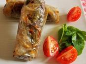 Nems riz-lentilles-poivrons-aromates (Vegan)