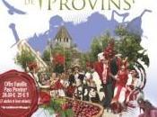 Sorties Week-end médiéval Provins