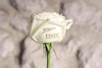 Déclarer votre Amour sur une rose,