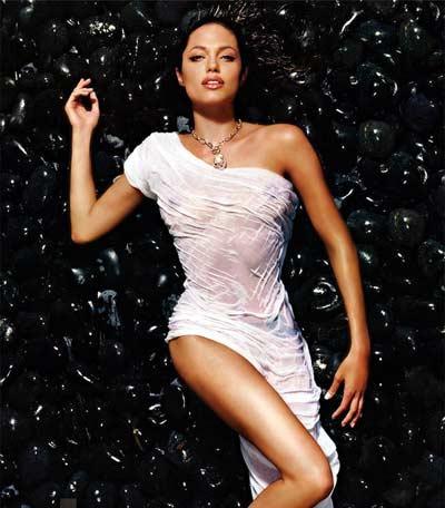 http://media.paperblog.fr/i/97/973706/angelina-jolie-photos-nue-sexy-star-L-1.jpeg