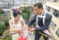 mariage sur une balançoire, anneaux