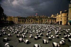 pandas Trocadéro