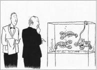 Bunnuy suicide homard