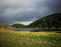 L'étang de Pradeille