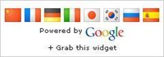 google-translate-mini-flags-single